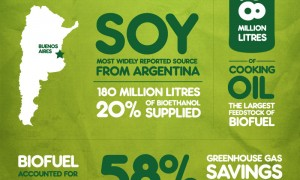 biofuel-infographic